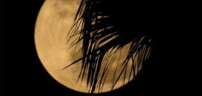 Kuredu Geschenke - Mondschein-Segeltrip