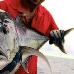 Kuredu Big Game Fishing