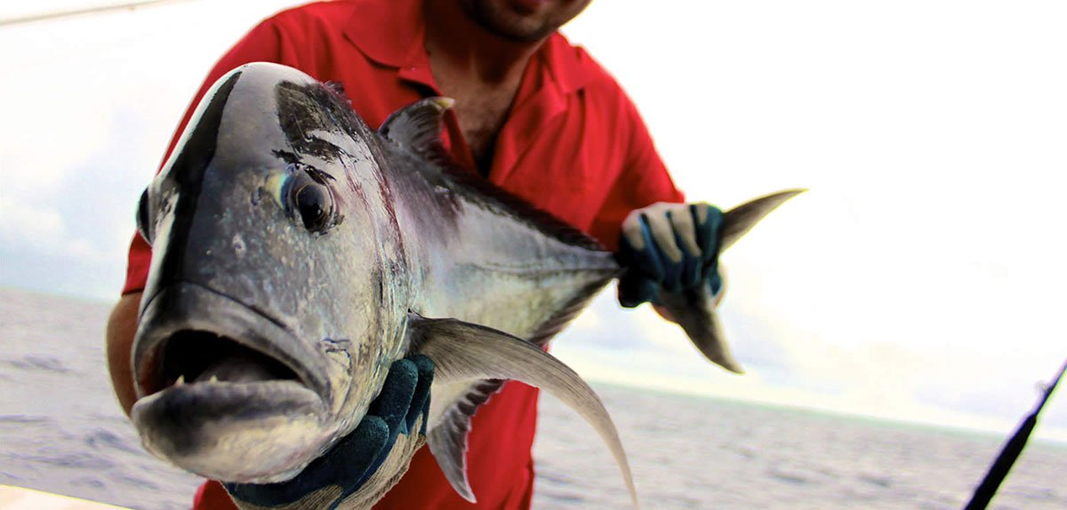 Kuredu Big Game Fishing