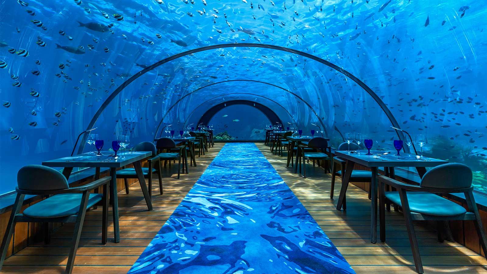 Undersea Restaurant Maldives